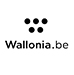 vincianne-wittamer-saddle-fitter-www.wallonia.be